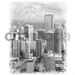 CITY14